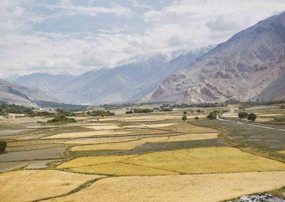 Wakhan-184
