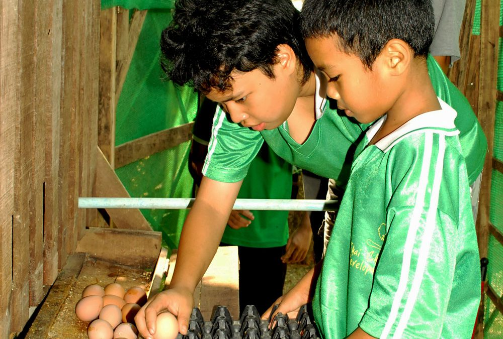 Support an Eco Farm for Special Needs Kids in Thailand